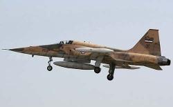Легкий многоцелевой истребитель F-5A Freedom Fighter