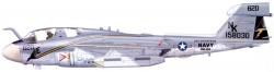 Cамолет РЭБ EA-6B Prowler